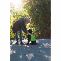 Gilet de sécurité pour chien long. dos 25 cm, 40-50 cm