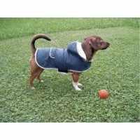 Manteau pour chien Teddy